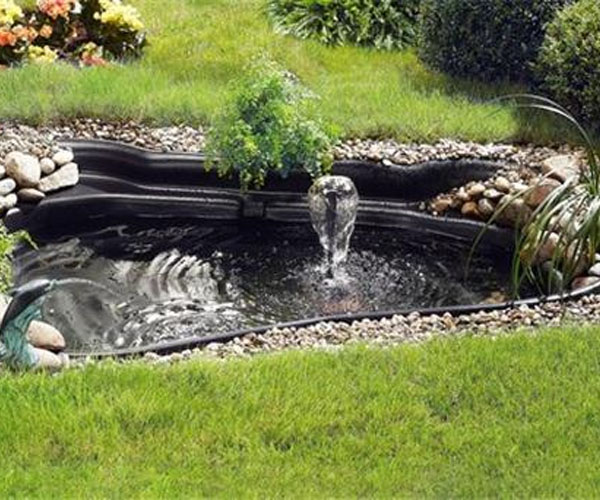 jardineria benages dise o y construcci n de estanques